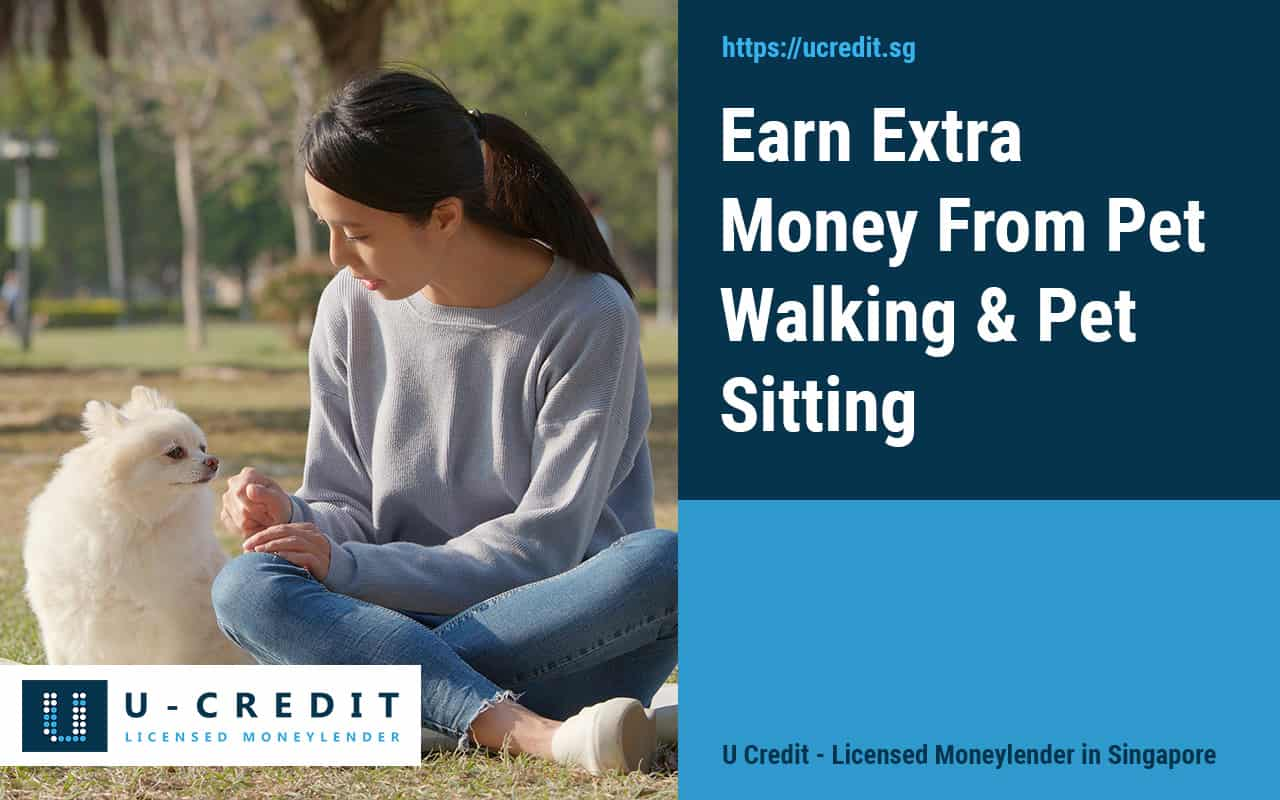 Earn-Extra-Money-From-Pet-Walking-Pet-Sitting Part Time Job Low Commitment U Credit